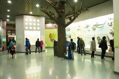 Asiat China, Peking, Peking naturhistorisches Museum Stockfotografie