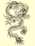 Asiat Dragon Tattoo Illustration Royaltyfri Bild