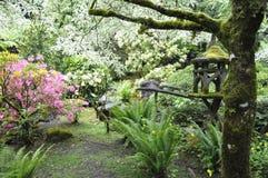 Asiat inspirerad trädgård Royaltyfria Bilder