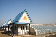 Asiat Kina, Peking, geotermisk expoträdgård, litet rum för växthus Arkivfoton