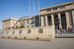 Asiat Kina, Peking, Pekingmuseum av naturhistoria Royaltyfri Foto