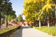 Asiatet Kina, Peking, den Jingshan kullen parkerar, historiska byggnader Arkivfoton