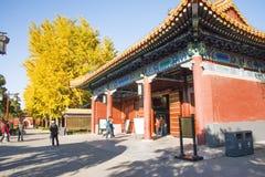 Asiatet Kina, Peking, den Jingshan kullen parkerar, historiska byggnader Royaltyfria Bilder