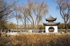 Asiatet Kina, Peking, Taoranting parkerar, vinterlandskapet, paviljonger, terrasser och öppnar korridorer Royaltyfria Bilder