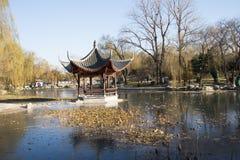 Asiatet Kina, Peking, Taoranting parkerar, vinterlandskapet, paviljonger, terrasser och öppnar korridorer Arkivbild