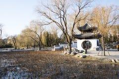 Asiatet Kina, Peking, Taoranting parkerar, vinterlandskapet, paviljonger, terrasser och öppnar korridorer Arkivbilder