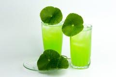 Asiatic wąkroty zielarski sok odizolowywający na białym, zdrowym karmowym agai, Obrazy Stock