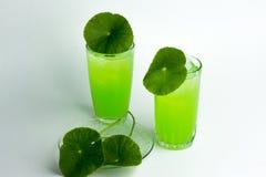 Asiatic wąkroty zielarski sok odizolowywający na białym, zdrowym karmowym agai, Zdjęcie Stock