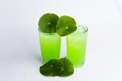 Asiatic wąkroty zielarski sok odizolowywający na białym, zdrowym karmowym agai, Fotografia Royalty Free
