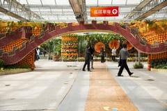 Asiatico Cina, Pechino, carnevale di agricoltura, centro espositivo dell'interno, disposizione del paesaggio Fotografie Stock Libere da Diritti