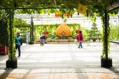 Asiatico Cina, Pechino, carnevale di agricoltura, centro espositivo dell'interno, disposizione del paesaggio Fotografia Stock Libera da Diritti