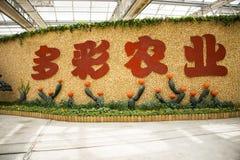 Asiatico Cina, Pechino, carnevale di agricoltura, centro espositivo dell'interno, disposizione del paesaggio Immagine Stock