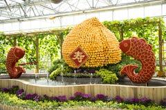Asiatico Cina, Pechino, carnevale di agricoltura, centro espositivo dell'interno, disposizione del paesaggio Immagine Stock Libera da Diritti