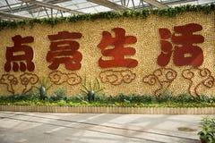 Asiatico Cina, Pechino, carnevale di agricoltura, centro espositivo dell'interno, disposizione del paesaggio Immagini Stock Libere da Diritti
