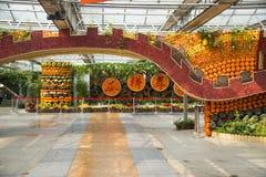 Asiatico Cina, Pechino, carnevale di agricoltura, centro espositivo dell'interno, disposizione del paesaggio Fotografia Stock