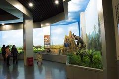 Asiatico museo di Cina, Pechino, Pechino di storia naturale Immagini Stock Libere da Diritti