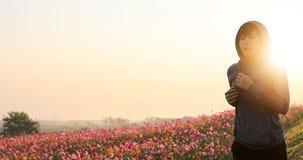 Asiatinnen, die auf Morgen am Kosmosblumenfeld r?tteln Weichzeichnung und undeutliches lizenzfreie stockfotos
