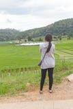 Asiatinnen am grünen terassenförmig angelegten Reisfeld, Mae Klang Luang Chiang-MAI Lizenzfreies Stockbild