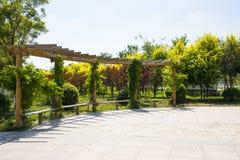 Asiatique Chine, Tianjin Wuqing, expo verte, construction de parc, centre de cadre jpg Photographie stock