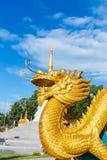 Asiatique de dragon Photographie stock
