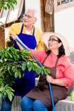 Asiatische ältere lächelnde Paare, während Bewässerungsgrün Plan kultivierte Stockbilder
