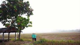 Asiatische ältere Videopaare, die nahe bei Gazebo mitten in nebeligem Reisfeld des Nebels stehen Bauernhof und landwirtschaftlich stock footage