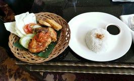 Asiatische Art Hainan-Huhnreisnahaufnahme lizenzfreie stockfotos