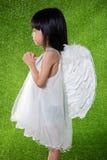 Asiatische chinesische tragende Engelsflügel des kleinen Mädchens und Beten Lizenzfreie Stockbilder