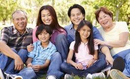 Asiatische Familie des Porträts von mehreren Generationen im Park Stockbild