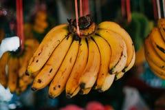 Asiatische frische Früchte Lizenzfreie Stockbilder