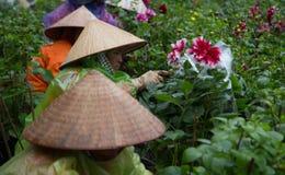 Asiatische Gärtner mit dem traditionellen konischen Hut, der um einem Botanikgarten sich kümmert Stockbild