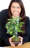 Asiatische hübsche Frau, die eine Anlage anhält lizenzfreie stockfotos