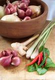 Asiatische heiße und würzige Nahrungsmittelbestandteile Stockbild