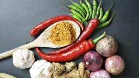 Asiatische Küchebestandteile - Knoblauchschalotten des roten Pfeffers grünen Lizenzfreie Stockfotografie