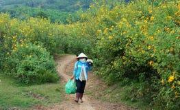 Asiatische Landschaft, vietnamesischer Landwirt, wilde Sonnenblume Dalat Lizenzfreie Stockbilder