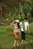 asiatische Landwirte Lizenzfreie Stockbilder