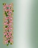 Asiatische Lilie blüht Rand Lizenzfreie Stockbilder