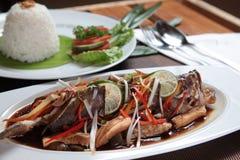 Asiatische Meeresfrüchte Groper-Fische mit Reis Lizenzfreie Stockfotos
