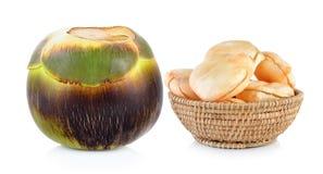 Asiatische Palmyrapalme, Toddypalme, Arengapalme Lizenzfreies Stockfoto