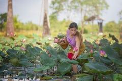 Asiatische Schönheit, die auf dem Lotosgebiet geht lizenzfreie stockfotos