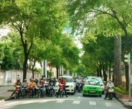 Asiatische Stadt, grüner Baum, vietnamesische Straße Stockbild