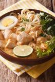 Asiatische starke Suppe mit Huhn, Ei, Reisnudeln, Sojabohnensprossen c Lizenzfreie Stockbilder