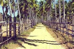 Asiatische Straße im Dorf Lizenzfreie Stockfotos