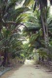Asiatische Straße im Dorf Stockfoto