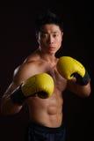 Asiatischer Boxer in seiner angreifenden Position Stockbild
