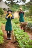 Asiatischer Gärtner mit Hacke Stockbild