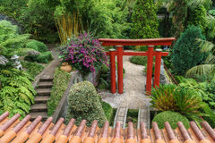 Asiatischer Garten Lizenzfreies Stockbild