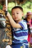 Asiatischer Junge reinigt Pferd Lizenzfreies Stockbild