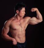Asiatischer Karosserien-Erbauer, der linkes bicep biegt stockfoto
