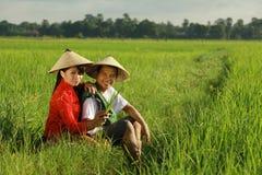 Asiatischer Landwirt am Reisfeld Lizenzfreie Stockbilder